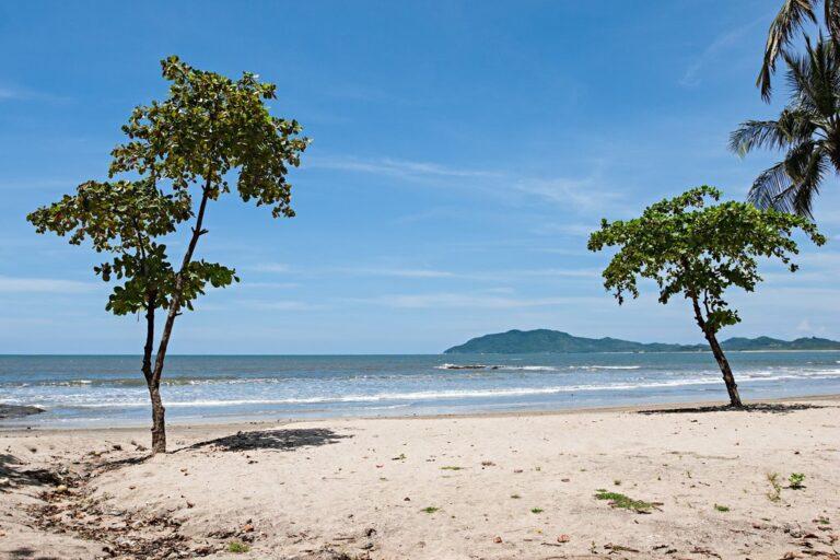 Monteverde a Tamarindo: mejores rutas y consejos de viaje