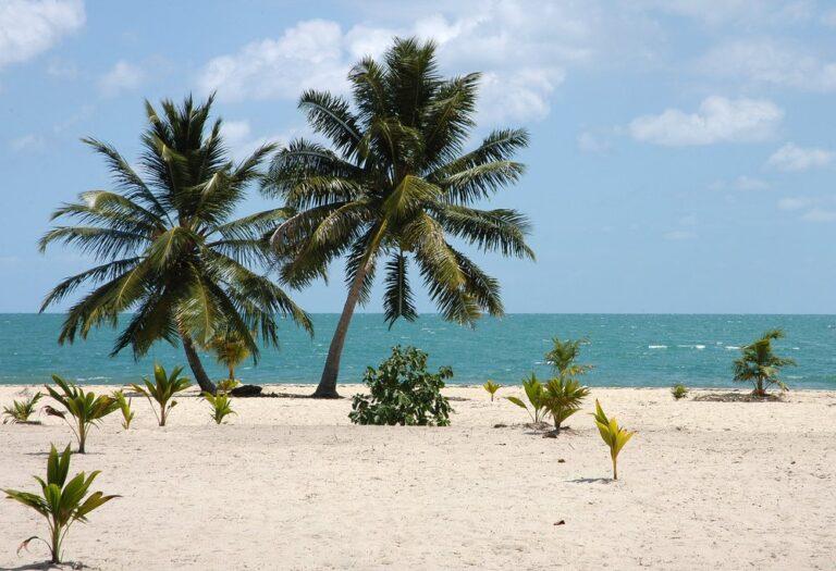 Aventura en el arrecife del faro de Belice – 7 días
